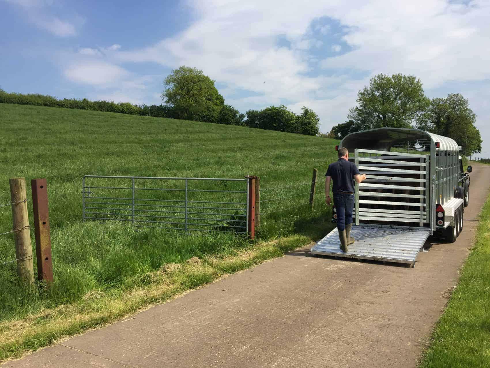 Nugent Livestock Trailer